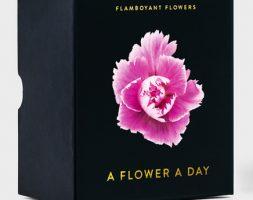 Kalender – A FLOWER A DAY